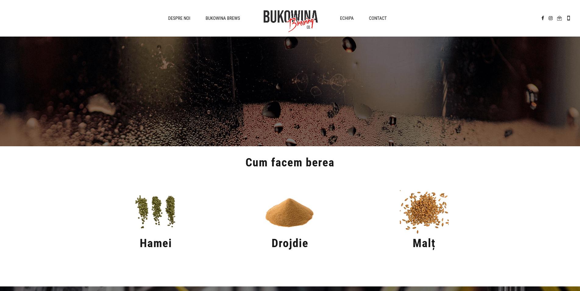 Bukowina Brewing1